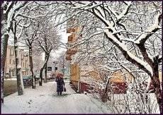 Теплые оттенки зимы...