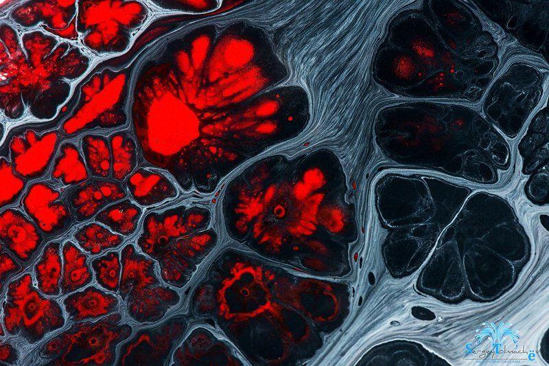 капли, жидкость, макро, арт, всплеск, сергейтолмачев, liquidart, art, liquid Жерло вулканаphoto preview