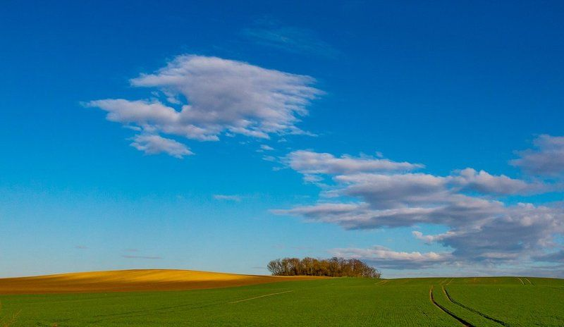 Moravian landscapephoto preview