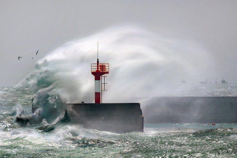 норд, -, ост, , новороссийск, черное, море Норд - Остphoto preview