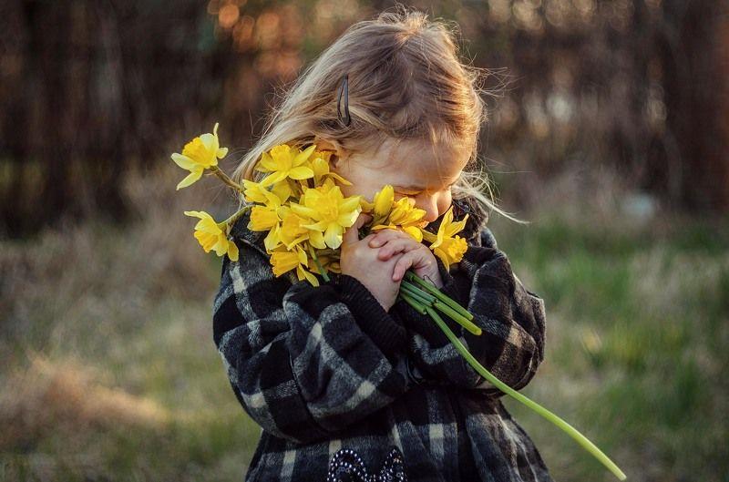 В озябший мир идёт весна.photo preview