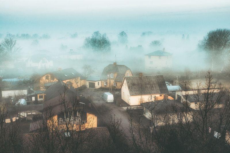 fog,туман,пейзаж,latvia,jelgava,утро Туман над крышами Елгавыphoto preview