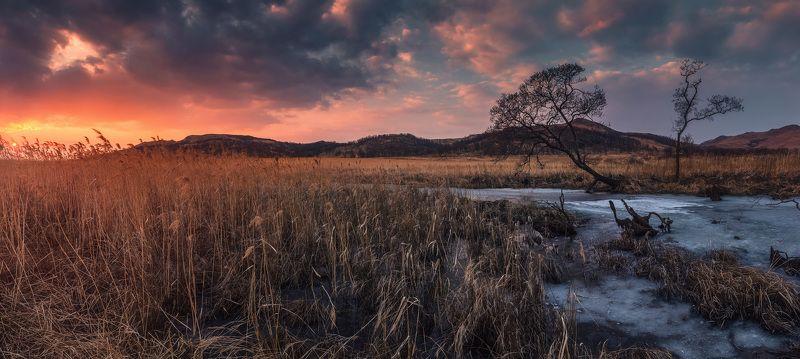 панорама, весна, закат В желании тепла...photo preview