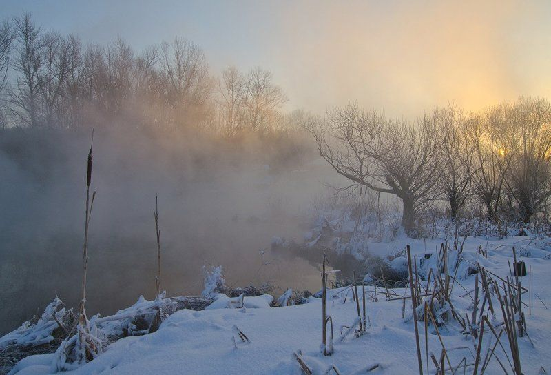 зима холод мороз снег иней озеро горячка Солнце в ивахphoto preview