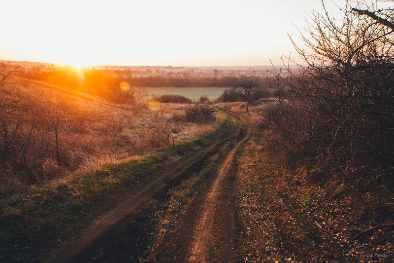 пейзаж, природа, весна, nature, landscape Утренний апрельphoto preview