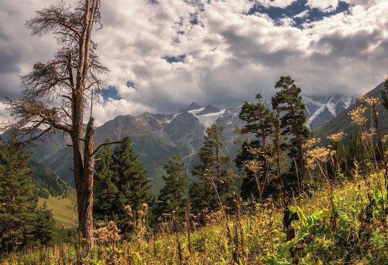 На теплых склонах Приэльбрусьяphoto preview