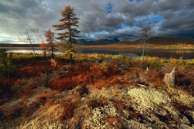 Осень у озераphoto preview