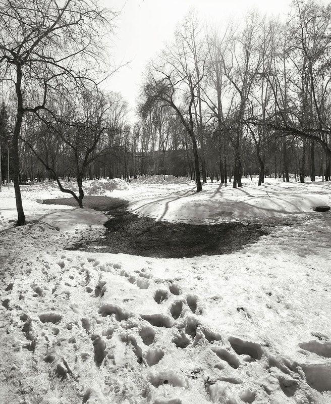 весна, март Мартphoto preview