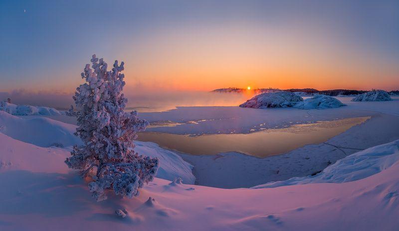 карелия, ладожское озеро, зима, мороз, шхеры, лёд, сосна, солнце, месяц, снег, остров. Мороз крепчает, вечер.photo preview
