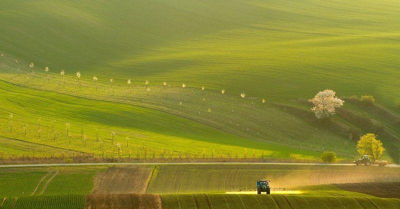Moravian tuscany Chemistryphoto preview