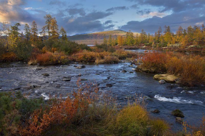 осенью у ручьяphoto preview