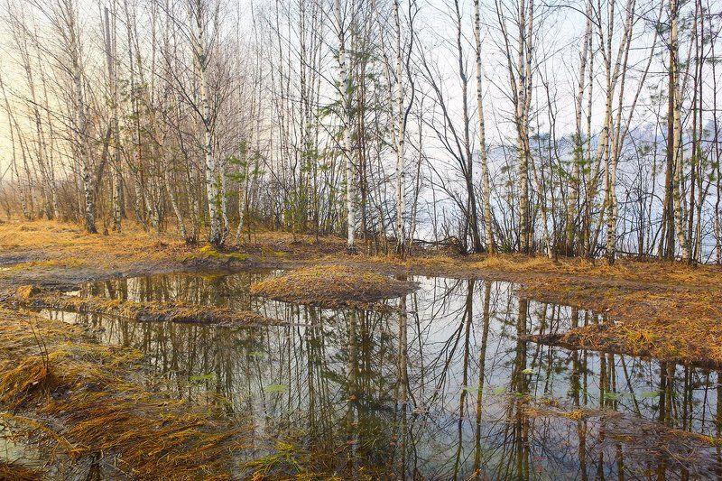 весна прозрачность вода Прозрачная веснаphoto preview