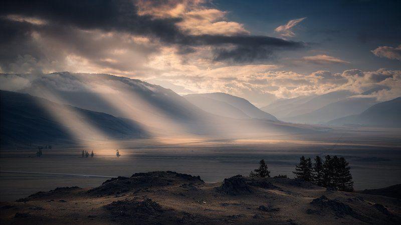 пейзаж, природа, утро, раннее, восход, рассвет, лучи, свет, горы, высокий, большой, красивая, степь, курай, алтай, сибирь, далекий, широкий, дымка, туман Утро в курайской степиphoto preview