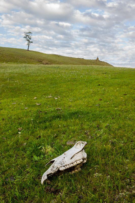 Монголия ***photo preview