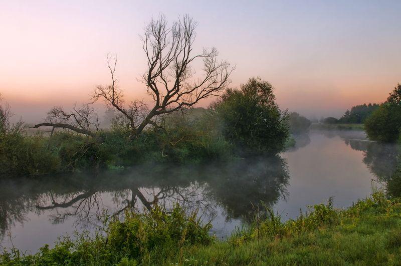 утро, туман, природа, речка На рассветеphoto preview