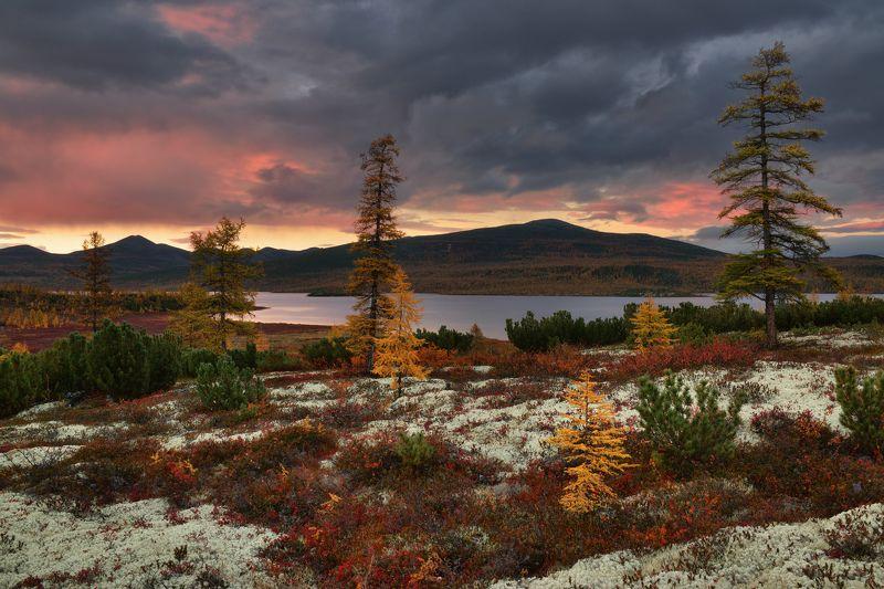 Колымская осень...photo preview
