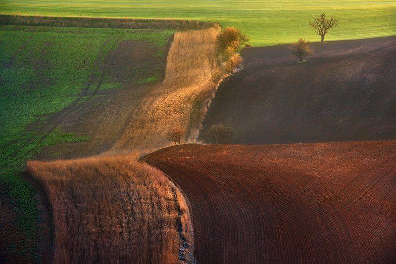 morawy,czech republik,krajobraz Morawskie dywanyphoto preview