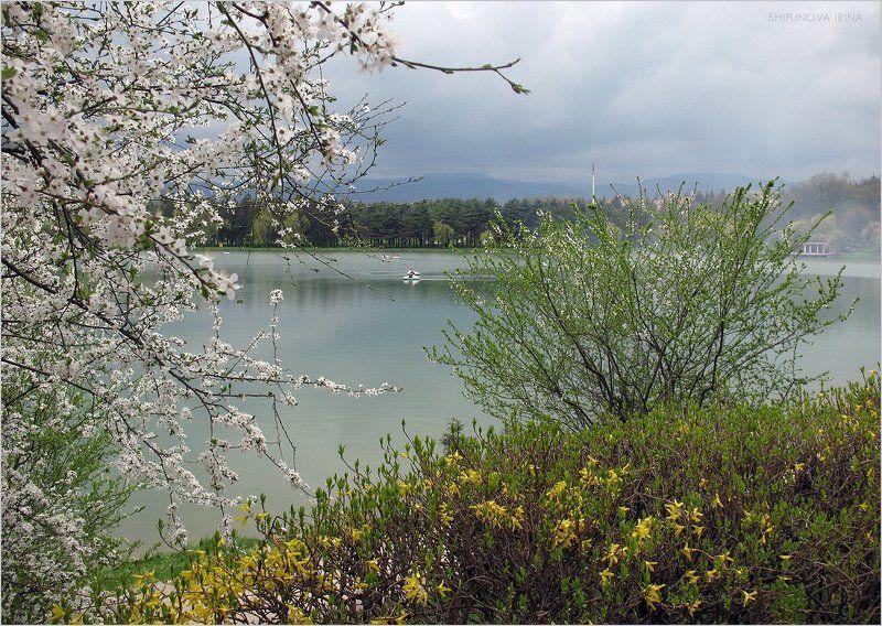 Цветущий май 2photo preview