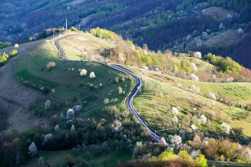 spring,colors,nature,romania,road, The colors of naturephoto preview