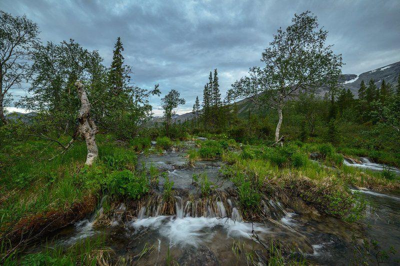хибины, лето, кольский, заполярье, север, ночь, полярный день, *photo preview