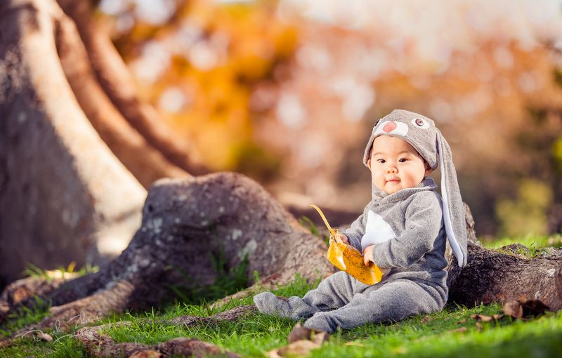 bunny, easter, kid, girl, child, tree, light, grass, fairy-tale Fairy-tale Bunnyphoto preview