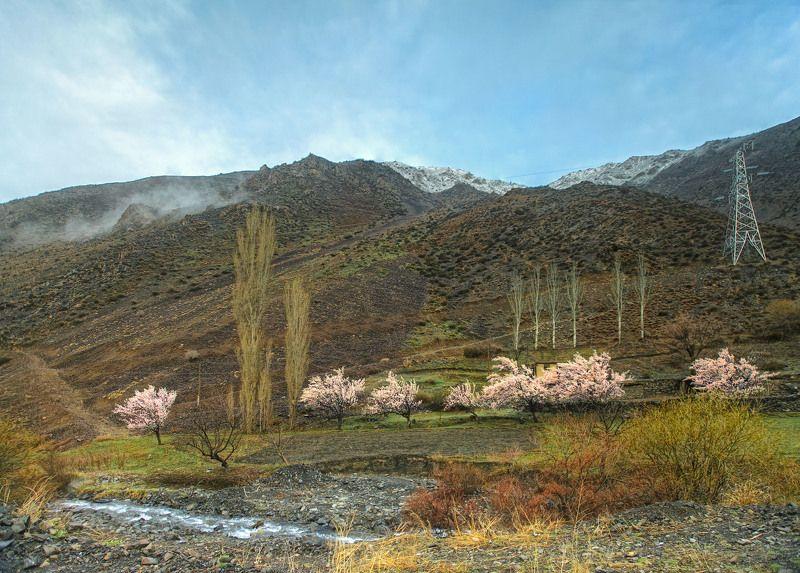 Весна в горах . Айни. Таджикистанphoto preview