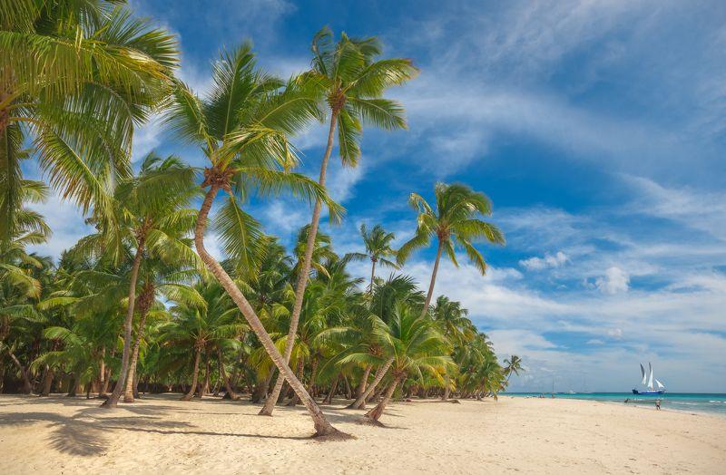 отдых, лето, остров, доминикана, саона, баунти, рай, море, океан, песок, пляж На острове Саонаphoto preview