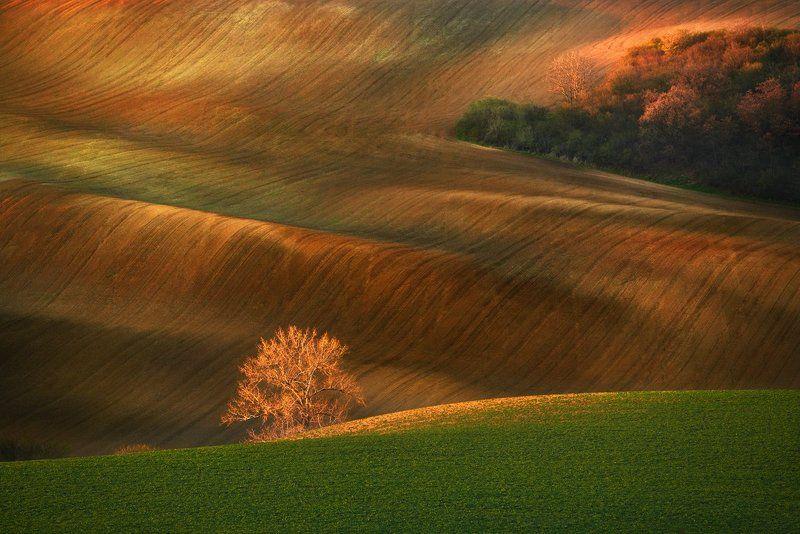 morawy,czech republik,krajobraz Morawskie polaphoto preview