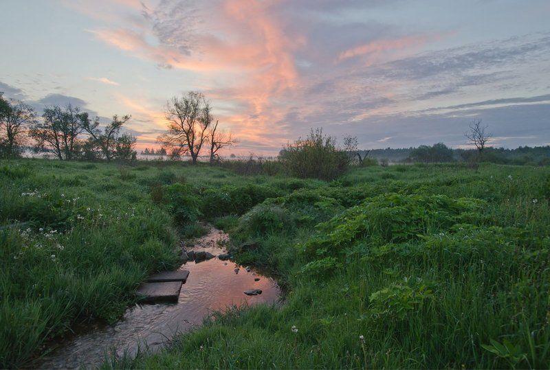 родничок утро рассвет природа пейзаж першино Родничокphoto preview