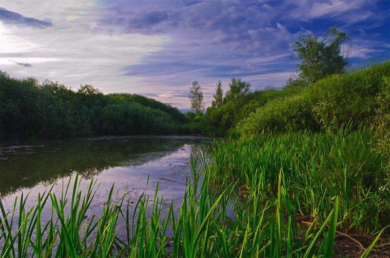 nevant60 березуцкий _александр природа красота пейзаж брянск Вечер в тихой заводиphoto preview