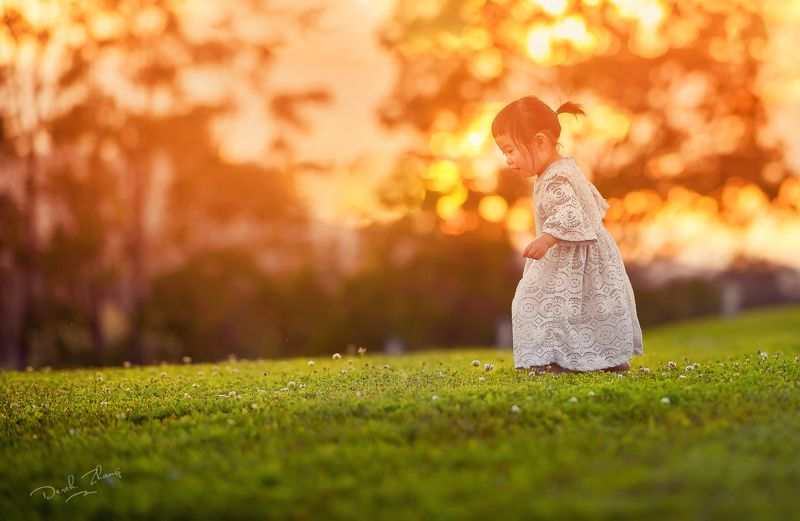 child, kid, sunset, warm, natural light, childhood, girl, flowers, field, vineyard, wild sunset enjoyphoto preview