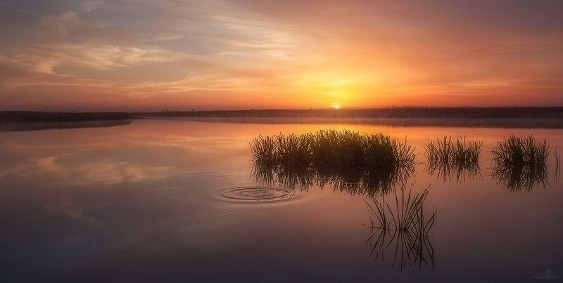 рассвет, озеро, волгоград Не дышатьphoto preview