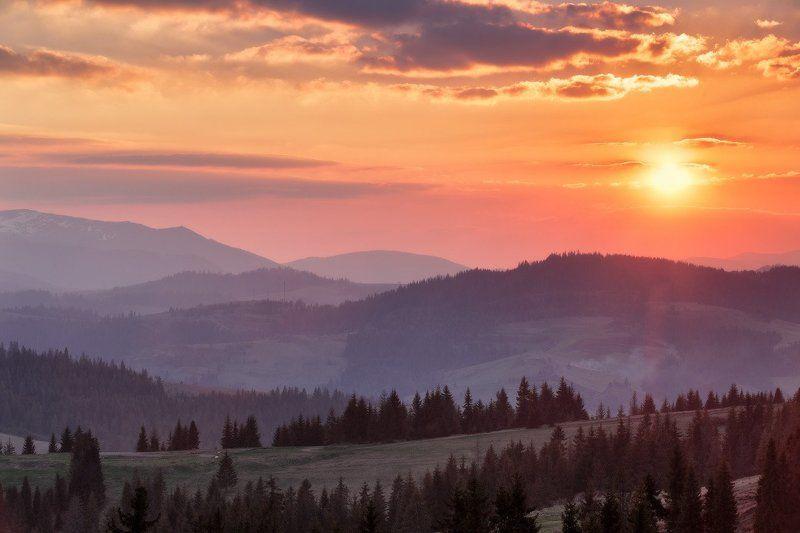 апрель, весна, вечер, горы, закарпатье, закат, карпаты Весна идетphoto preview
