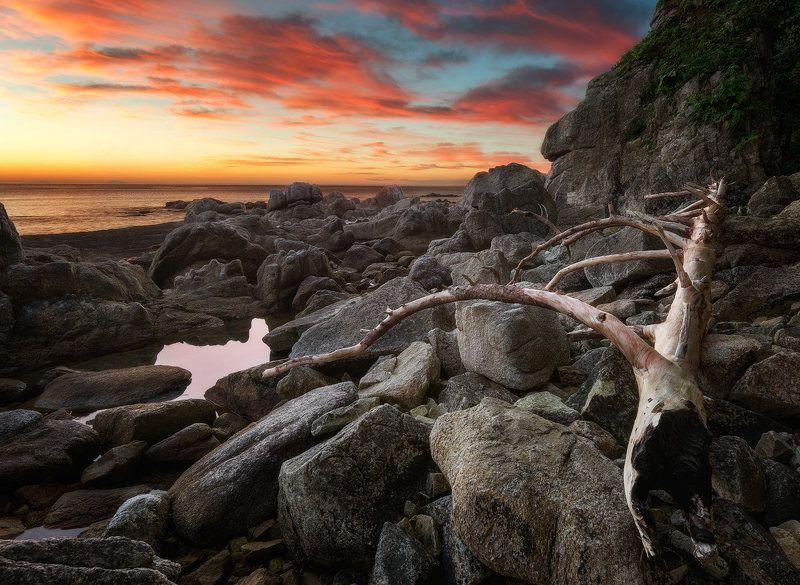 приморский край, заповедник, рассвет, море, солнце перегорелаphoto preview