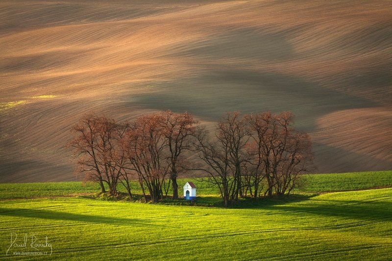 Czech Republic, Bohemia, Czech, South moravia, Moravia, moravian tuscany, Tschechische Republik, Südmähren, Mähren, Europe, tree, chapel, grove, green, brown, field, evening field, spring field, morning, morning light, countryside, mood, lines, hills, rur Moravian chapelphoto preview