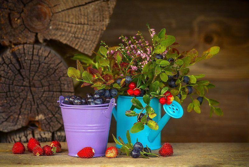 земляника черника лето ягоды захотелось лета и вкуснятинки )photo preview