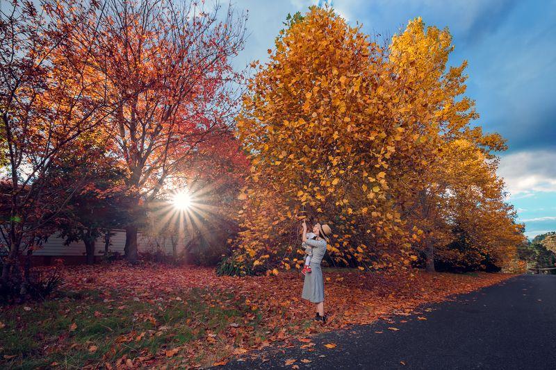Autumn coloursphoto preview