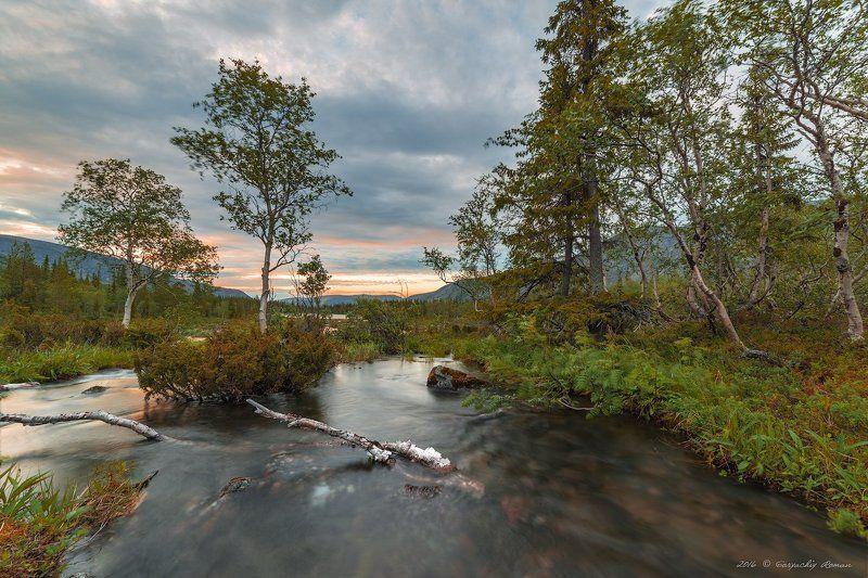 хибины, лето, кольский, заполярье, север, ночь, полярный день, Хибинский бриз.photo preview