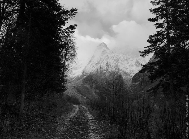 горы,кавказ,домбай,дорога,чб,тучи,ущелье,пейзаж Дорога в ущельеphoto preview