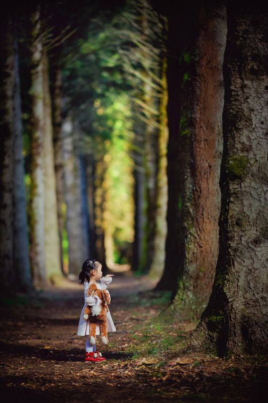 kid, child, girl, pine tree, trees, breenhold garden, celine, face, discovery, autumn pine treesphoto preview