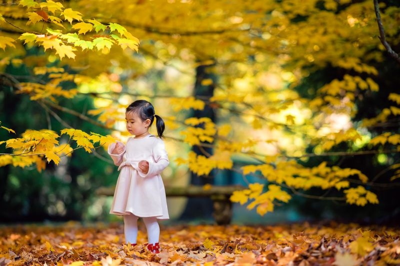 kid, child, girl, breenhold garden, face, discovery, autumn, leaf, leaves,face                                                                                                                                                                                  Autumn touchphoto preview