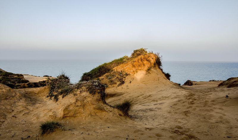 Первые лучи солнца . Приморский ландшафт. Конец апреля .Израильphoto preview