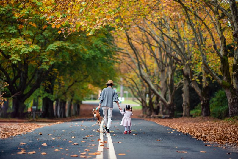 kid, girl, child, autumn, leaves, road, colours, family, together Queens Avenuephoto preview