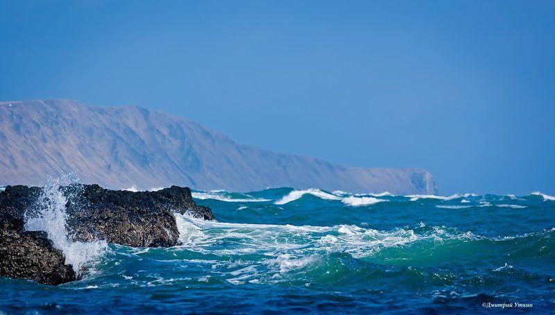 мыс вакселя, риф, тихий океан, волна, остров беринга, командорские острова Мыс Вакселяphoto preview
