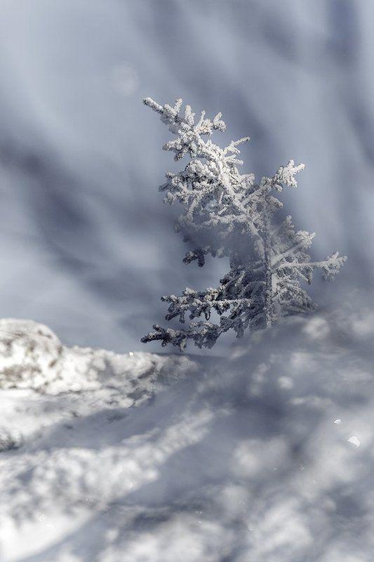 урал,зима,таганай,белый,горы,снег,солнце По ту сторонуphoto preview