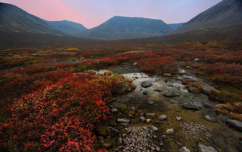 хибины Краски северной осениphoto preview