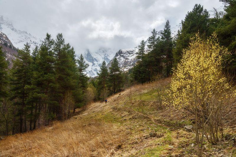 Ближе к горам и дальше от диванаphoto preview