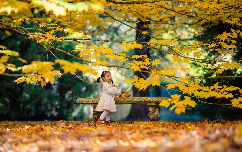 kid, child, girl, breenhold garden, face, autumn, leaf, leaves                                                                                                                                                                                                  ***photo preview