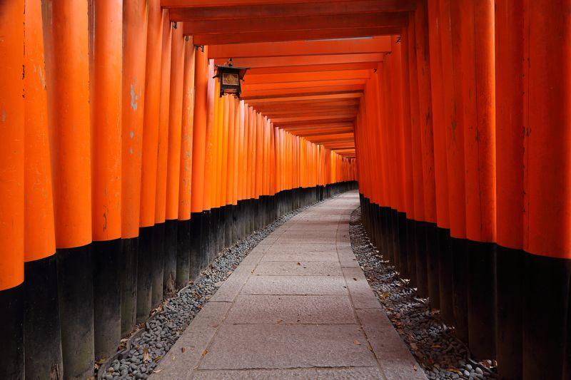киото, фусими, инари, япония, храм, путешествие, тур Фусими Инариphoto preview