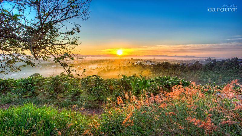 sunrise,baoloc,vietnam,grass New dayphoto preview